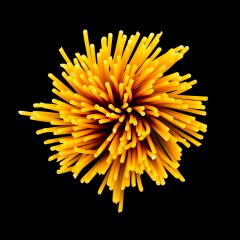 macaroni noodels swirl on black- Stock Photo or Stock Video of rcfotostock | RC-Photo-Stock