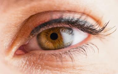 Macro image of woman eye- Stock Photo or Stock Video of rcfotostock | RC-Photo-Stock