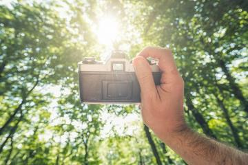 male hand holding a vintage camera against the forest with explosive sun to take a picture, point of view perspective.- Stock Photo or Stock Video of rcfotostock | RC-Photo-Stock