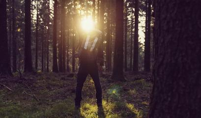 Man enjoying forest at sunset raised hands Travel Lifestyle and success concept- Stock Photo or Stock Video of rcfotostock | RC-Photo-Stock