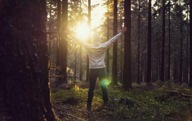 Man praying at sunset in the deep woods raised hands- Stock Photo or Stock Video of rcfotostock | RC-Photo-Stock