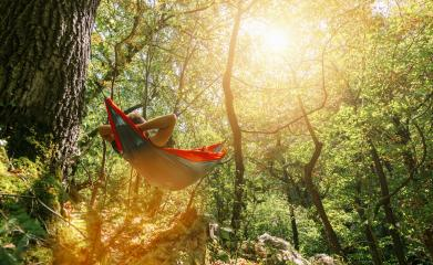 man relaxing in the hammock hanging among the trees in the forest- Stock Photo or Stock Video of rcfotostock | RC-Photo-Stock