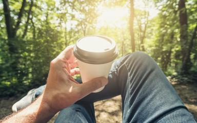 Man toasting coffee take away go cup against explosive sunlight in the forest. Point of view shot- Stock Photo or Stock Video of rcfotostock | RC-Photo-Stock