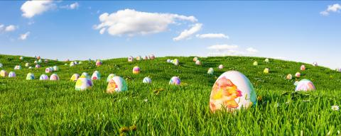 Many colorful easter eggs painted with water paint for easter hunt on a green meadow - Stock Photo or Stock Video of rcfotostock | RC-Photo-Stock