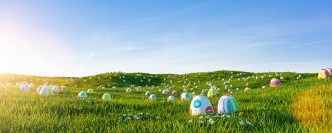 Many colorful easter eggs painted with water paint in the grass of a meadow for easter- Stock Photo or Stock Video of rcfotostock | RC-Photo-Stock