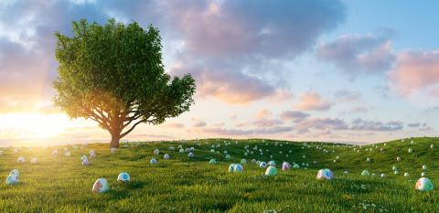 Many colorful painted Easter eggs are looking at meadow with tree for Easter, copy space for individual text- Stock Photo or Stock Video of rcfotostock | RC-Photo-Stock