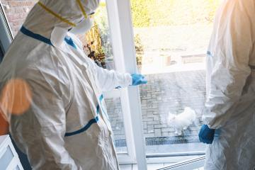 Medical professionals close house door for cat domestic animal to prevent others for COVID-19 infection at coronavirus epidemic- Stock Photo or Stock Video of rcfotostock | RC-Photo-Stock