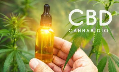 Medicinal CBD cannabis extract oil in a bottle. Concept of herbal alternative medicine, cbd oil, pharmaceutical industry : Stock Photo or Stock Video Download rcfotostock photos, images and assets rcfotostock | RC-Photo-Stock.: