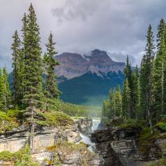 Mountains, river and waterfall make up magnificent landscape. Picturesque Canadian Rockies. The famous rugged Athabasca river. Jasper Park : Stock Photo or Stock Video Download rcfotostock photos, images and assets rcfotostock | RC-Photo-Stock.: