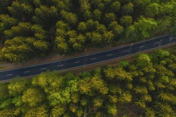 Narrow street between woodland, drone's view- Stock Photo or Stock Video of rcfotostock | RC-Photo-Stock
