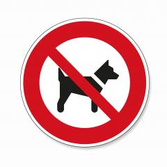 No dogs allowed. Dogs or pets not allowed in this area, prohibition sign on white background. Vector illustration. Eps 10 vector file.- Stock Photo or Stock Video of rcfotostock | RC-Photo-Stock