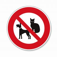 No Pets allowed. Dogs, Cats or pets not allowed in this area, prohibition sign on white background. Vector illustration. Eps 10 vector file.- Stock Photo or Stock Video of rcfotostock | RC-Photo-Stock