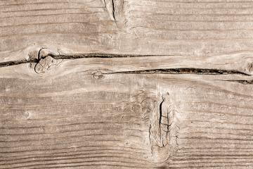 old timber wood background texture : Stock Photo or Stock Video Download rcfotostock photos, images and assets rcfotostock | RC-Photo-Stock.: