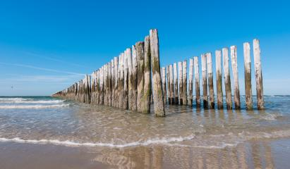 old wooden breakwaters on the Netherlands beach at summer- Stock Photo or Stock Video of rcfotostock | RC-Photo-Stock