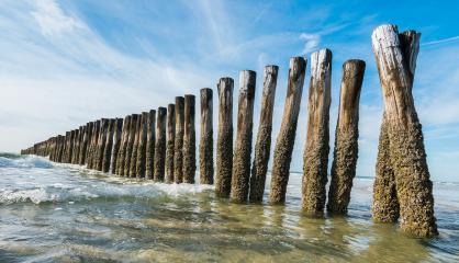 old wooden wave breakers at the beach : Stock Photo or Stock Video Download rcfotostock photos, images and assets rcfotostock | RC-Photo-Stock.: