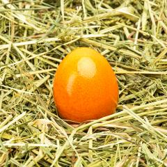 orange easter egg lies on hay- Stock Photo or Stock Video of rcfotostock | RC-Photo-Stock