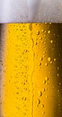overflowing beer in a glass with dew drops : Stock Photo or Stock Video Download rcfotostock photos, images and assets rcfotostock | RC-Photo-Stock.: