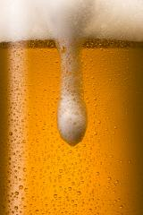 overflowing cold beer with dew drops : Stock Photo or Stock Video Download rcfotostock photos, images and assets rcfotostock | RC-Photo-Stock.: