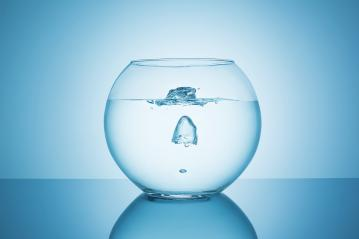 oxygen bubble in a fishbowl- Stock Photo or Stock Video of rcfotostock | RC-Photo-Stock