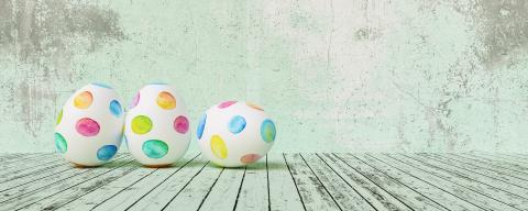 Painted easter eggs for Easter in front of a green grunge background wall, including copy space, banner size- Stock Photo or Stock Video of rcfotostock | RC-Photo-Stock