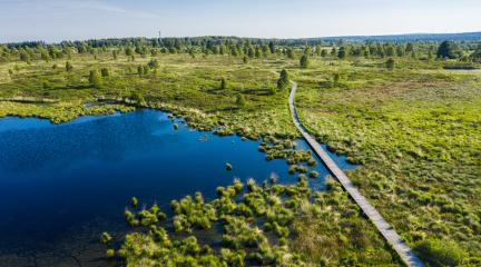 Panorama bug moor landscape as a panorama at the Hohes Venn with lake, trees and a trail : Stock Photo or Stock Video Download rcfotostock photos, images and assets rcfotostock | RC-Photo-Stock.:
