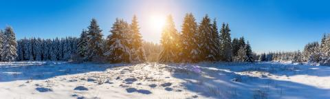 panoramic view of a winter landscape with snow and sunlight : Stock Photo or Stock Video Download rcfotostock photos, images and assets rcfotostock | RC-Photo-Stock.: