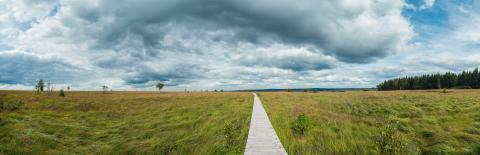 Panoramic view of the recreation area high Venn (Hautes fagnes) at the Eifel in belgium at a cloudy day - Stock Photo or Stock Video of rcfotostock | RC-Photo-Stock
