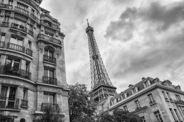 Paris Eiffel tower in black and white colors : Stock Photo or Stock Video Download rcfotostock photos, images and assets rcfotostock | RC-Photo-Stock.: