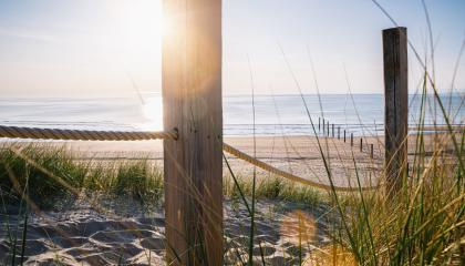 path at Baltic sea over sand dunes with ocean view, sunset summer evening- Stock Photo or Stock Video of rcfotostock | RC-Photo-Stock