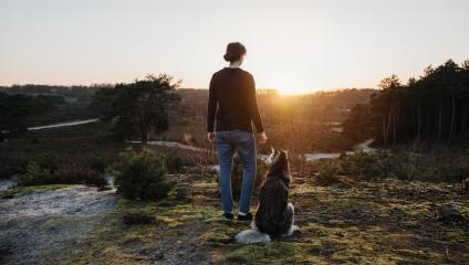 Person and dog stands thoughtfully in nature and have a wonderful view of the landscape. At sunrise they look out into the distance The woman and the husky enjoy life, are happy and content. : Stock Photo or Stock Video Download rcfotostock photos, images and assets rcfotostock | RC-Photo-Stock.: