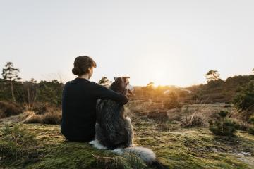 Person hugging a dog outdoors in beautiful nature. They enjoy the sunset. Emotional connection with trust. Happy content time together. Friendship between humans and dogs. Hugs. : Stock Photo or Stock Video Download rcfotostock photos, images and assets rcfotostock | RC-Photo-Stock.:
