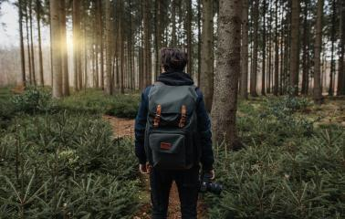Photographer taking photos in a beautiful forest on a hiking trail at sunset. The person photographs digitally. The forest looks very relaxing and energizing.- Stock Photo or Stock Video of rcfotostock   RC-Photo-Stock
