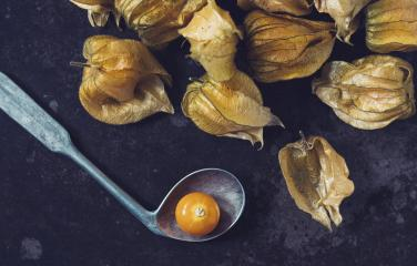 Physalis fruit (Physalis Peruviana) with spoon on dark background : Stock Photo or Stock Video Download rcfotostock photos, images and assets rcfotostock | RC-Photo-Stock.: