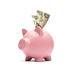 Piggy bank with dollars  : Stock Photo or Stock Video Download rcfotostock photos, images and assets rcfotostock | RC-Photo-Stock.: