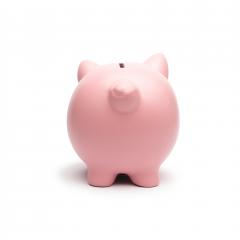 Pink piggy from behind on white background- Stock Photo or Stock Video of rcfotostock | RC-Photo-Stock