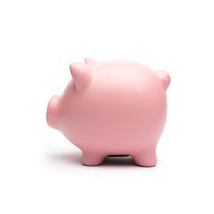 Pink piggy from the side on white background- Stock Photo or Stock Video of rcfotostock | RC-Photo-Stock