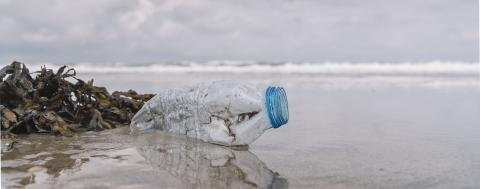 plastic bottle on the shore, copyspace for your individual text, banner size- Stock Photo or Stock Video of rcfotostock | RC-Photo-Stock