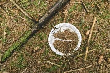 plastic Plate rotted in the forest, pollution and Environment concept- Stock Photo or Stock Video of rcfotostock | RC-Photo-Stock