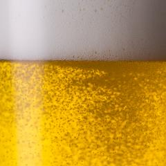 pouring beer : Stock Photo or Stock Video Download rcfotostock photos, images and assets rcfotostock | RC-Photo-Stock.:
