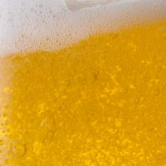 Pouring beer in a glass- Stock Photo or Stock Video of rcfotostock | RC-Photo-Stock