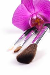 powder brushes  with orchid white background : Stock Photo or Stock Video Download rcfotostock photos, images and assets rcfotostock | RC-Photo-Stock.: