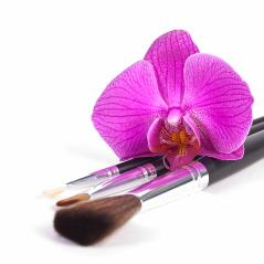 powder brushes  with orchid white background- Stock Photo or Stock Video of rcfotostock | RC-Photo-Stock