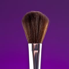 powderbrush on purple background : Stock Photo or Stock Video Download rcfotostock photos, images and assets rcfotostock | RC-Photo-Stock.: