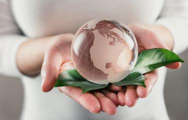 Protect the World - glass globe in hands- Stock Photo or Stock Video of rcfotostock | RC-Photo-Stock