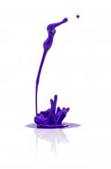 purple paint splashing isolated on white- Stock Photo or Stock Video of rcfotostock | RC-Photo-Stock