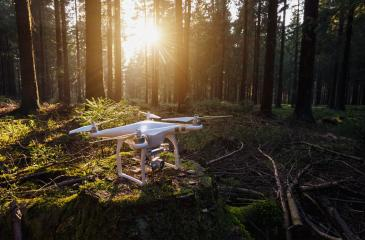 Quadrocopter drone on a tree trunk at sunset- Stock Photo or Stock Video of rcfotostock | RC-Photo-Stock