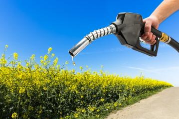Recharge gas Eco-Friendly : Stock Photo or Stock Video Download rcfotostock photos, images and assets rcfotostock   RC-Photo-Stock.: