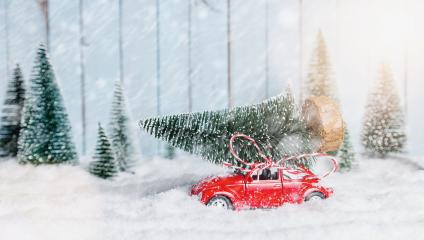 red car carrying a Christmas tree in a snow covered miniature evergreen forest landscape- Stock Photo or Stock Video of rcfotostock | RC-Photo-Stock