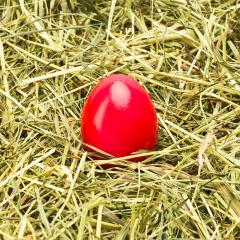 red easter egg lies in hay- Stock Photo or Stock Video of rcfotostock | RC-Photo-Stock