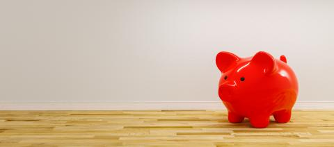 red piggy bank as row leader, investment and development concept - copyspace for your individual text. - Stock Photo or Stock Video of rcfotostock | RC-Photo-Stock